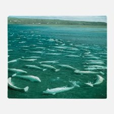 Beluga whales moulting Throw Blanket