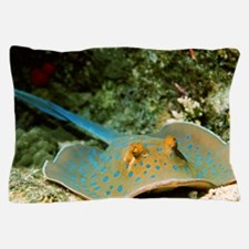 Blue-spotted fantail ray Pillow Case