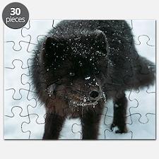 Blue fox Puzzle