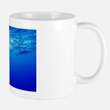 Blacktip reef sharks Mug