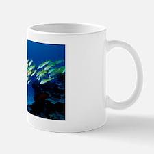 Blue-lined snappers Mug