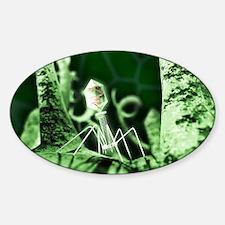 Bacteriophage virus, artwork Sticker (Oval)