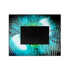 Biometric identification Picture Frame