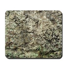 Camouflaged peppered moth Mousepad