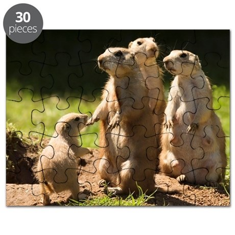 Black-tailed prairie dogs Puzzle
