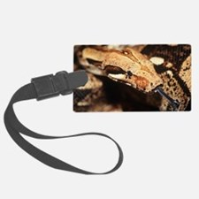 Boa constrictor Luggage Tag