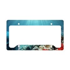 Bumphead parrotfish License Plate Holder