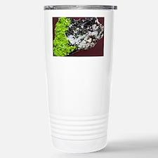 Autunite Stainless Steel Travel Mug