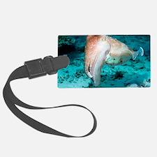 Broadclub cuttlefish Luggage Tag