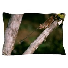 Chameleon catching prey Pillow Case