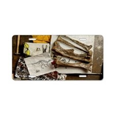Camptosaurus bones Aluminum License Plate