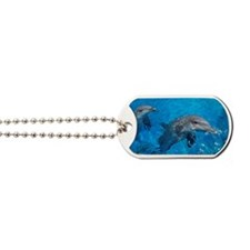 Bottlenose dolphins Dog Tags