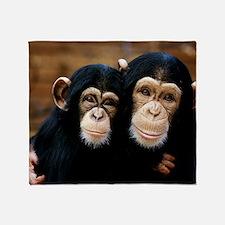 Chimpanzees Throw Blanket