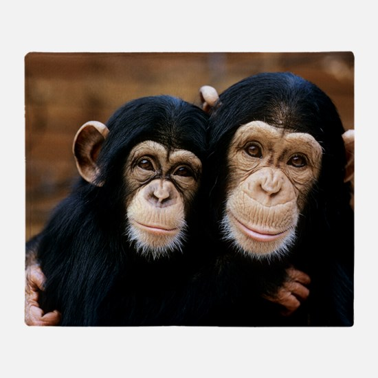 Chimpanzees Throw Blanket
