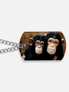 Chimpanzees Dog Tags