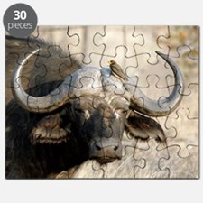 Cape buffalo and yellow-billed oxpecker Puzzle