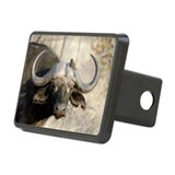 African cape buffalo Rectangle