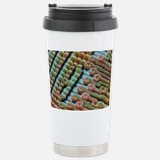 Coloured SEM of surface Travel Mug