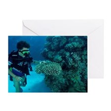 Child diver Greeting Card