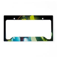 Commercial diver License Plate Holder