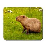 Capybara Classic Mousepad