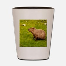 Capybara Shot Glass