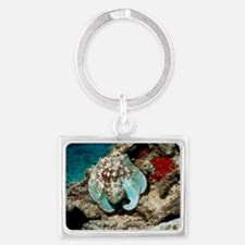 Common octopus Landscape Keychain