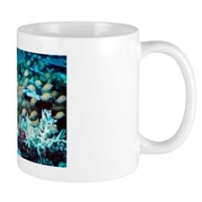 Convict surgeonfish with bleached coral Mug