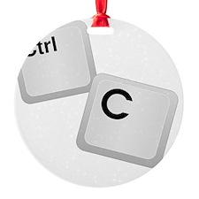 Control C, copy Ornament