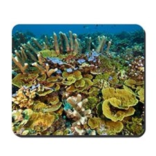 Coral reef community Mousepad