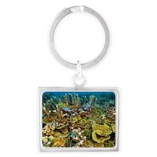 Coral reef community Landscape Keychain