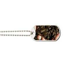 Cupped hands holding medicinal leeches Dog Tags
