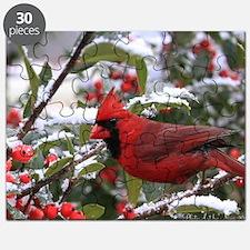 Christmas Cardinal Puzzle
