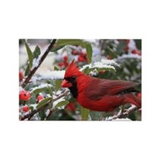 Christmas Cardinal Rectangle Magnet