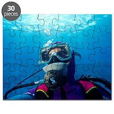 Diver communication system Puzzle