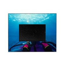 Diver communication system Picture Frame