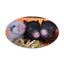 3 Little Pigs Oval Car Magnet