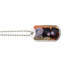 3 Little Pigs Dog Tags