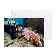 Diver exploring a wreck Greeting Card