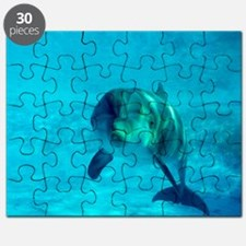 Dolphin in captivity Puzzle