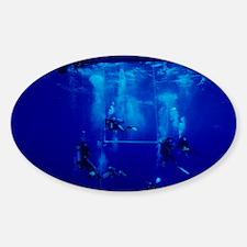 Divers decompressing beneath a boat Decal