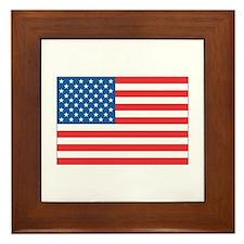 u.s.a flag  Framed Tile