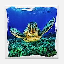 aquatic sea turtle Tile Coaster