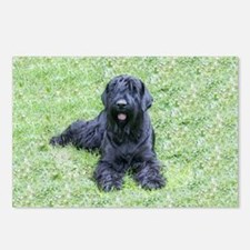 giant schnauzer Postcards (Package of 8)
