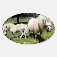 Mini Pony Sticker (Oval)