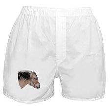 """""""Fjord 2"""" Boxer Shorts"""
