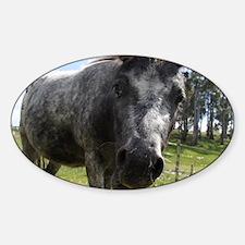 Mini Pony 1 Sticker (Oval)