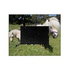 Mini Pony 12 Picture Frame