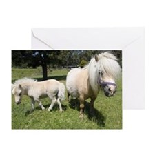 Mini Pony 12 Greeting Card
