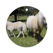 Mini Pony 12 Round Ornament